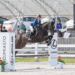 duże konie I półfinał