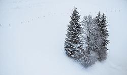 THEMENBILD - verschneite Baeume in der Winterlandschaft, aufgenommen am 24. Dezember 2018 in Zell am See, Oesterreich // snowy trees in the winter landscape, Zell am See, Austria on 2018/12/24. EXPA Pictures © 2018, PhotoCredit: EXPA/ JFK