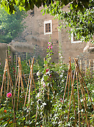 The garden of a guesthouse in the hills of Toubkal National Park at Imlil, Morocco