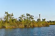 San Joaquin Marsh Osprey Nesting Platform