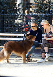 September 14, 2016 - New York, New York, United States - Actress Amanda Seyfried (L) walks her dog Finn after anouncing her engagement to Thomas Sadowski on September 14 2016 in New York City  (Credit Image: © Zelig Shaul/Ace Pictures via ZUMA Press)