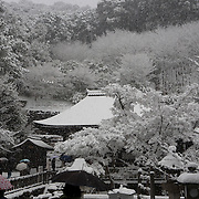 """Kyoto, Japan, December 2010. Kiyomizudera (""""Pure Water Temple"""") one of the most celebrated temples of Japan."""