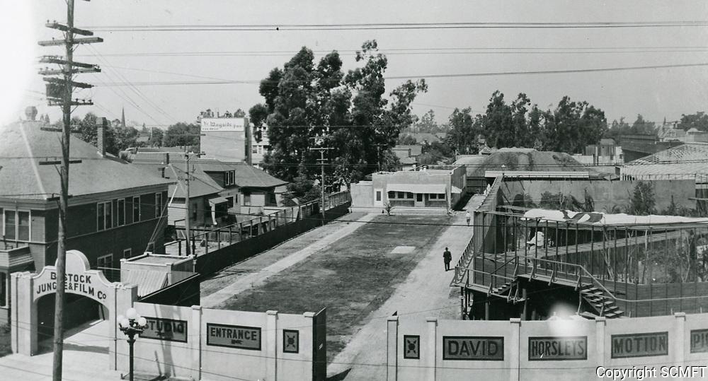 1916 David Horsley Studios and Bostock Jungle Film Co.