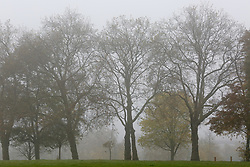© Licensed to London News Pictures. 08/11/2019. London, UK. A foggy morning in Finsbury Park, north London.  Photo credit: Dinendra Haria/LNP