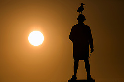 © Licensed to London News Pictures. 21/03/2017. Whitby UK. A seagull sits on top of the Captain Cook memorial as the sun rises this morning in Whitby on the Yorkshire coast. Photo credit: Andrew McCaren/LNP