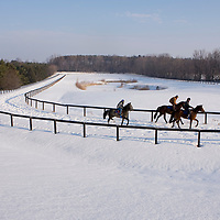 Norse Ridge Farms