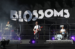 Left to right: Myles Kellock, Tom Ogden and Joe Donovan from Blossoms perform during the TRNSMT festival on Glasgow Green in Glasgow.
