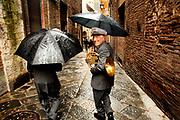 Siena. Italy 2010
