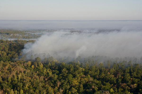 Stock photo of an aerial view of East Texas wildfires