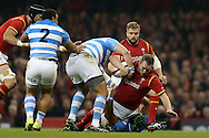 Gethin Jenkins of Wales is hauled down by Ramiro Herrera of Argentina. Under Armour 2016 series international rugby, Wales v Argentina at the Principality Stadium in Cardiff , South Wales on Saturday 12th November 2016. pic by Andrew Orchard, Andrew Orchard sports photography