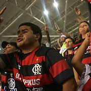 A Flamengo fan reacts to a refereeing decision during his teams match against Palmeiras in the Futebol Brasileirao  League match at Estadio Olímpico Joao Havelange, Rio de Janeiro, Palmeiras won the match 3-1. Rio de Janeiro,  Brazil. 25th September 2010. Photo Tim Clayton