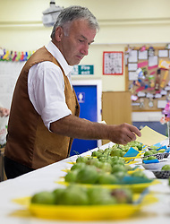 © Licensed to London News Pictures.04/08/15<br /> Egton, UK. <br /> <br /> <br /> Winners cards are placed alongside entries during the annual Egton Gooseberry Show. <br /> There are only two Gooseberry societies left in the country. One in Cheshire and one at Egton in North Yorkshire. The annual show in Egton uses traditional Avoridupois scales to measure the weight of the berries and members of the society are fanatical about trying to grow the best berries each year. <br /> <br /> Photo credit : Ian Forsyth/LNP