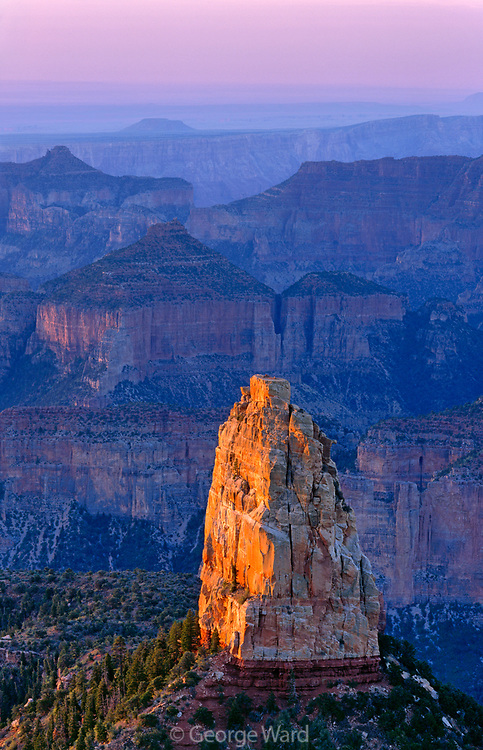Mount Hayden fromImperial Point at Dawn,Grand Canyon National Park, Arizona