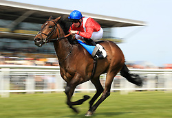 Mystic Flight ridden by Jack Mitchell wins the Coolmore Stud Novice Stakes at Newbury Racecourse.