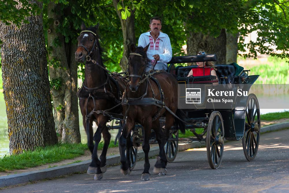 Horse carriage, Nesvizh, Mnsk Province, Belarus