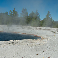 Wildflowers grow beside Surprise Pool at Lower Geyser Basin in Wyoming's Yellowstone National Park.