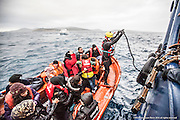 """9th of Jan 2016<br /> <br /> Dramatic rescues as refugee deaths in Aegean reach record high<br /> <br /> A MOAS rescue swimmer helps guide the migrant boat alongside the  MOAS mothership, Responder. The  overloaded open boat carrying 55 migrants. made a distress call to say they had lost engine power and were drifting in the heavy swell. The SAR team launched their fast rescue craft and brought the migrant boat next to the MOAS mothership, Responder. It was an extremely challenging rescue because of the heavy sea swell, but all the migrants were safely brought aboard.<br /> <br /> ATHAGONISI - Search and rescue charity Migrant Offshore Aid Station (MOAS) has assisted hundreds of refugees from hostile seas between Turkey and Greece since it began operating in the region just before Christmas.<br />  <br /> The MOAS crew has witnessed shocking scenes of life and death, having led complex deep water and nearshore rescues over the past four weeks. The human toll has been described as """"distressing"""" and """"desperate"""" by reporters who have been embedded with MOAS.<br />  <br /> MOAS, which saved almost 12,000 refugees from the Mediterranean Sea since 2014, expanded its operations to the Aegean Sea thanks to thousands of donations that reached the organisation after the horrific death of Alan Kurdi, a Syrian toddler who was photographed washed ashore on a Turkish beach last September.<br />  <br /> The charity is operating off the Greek island of Agathonisi from a 51-metre vessel equipped with two fast rescue launches named after Alan and his brother Galip, who also died in September's shipwreck.<br />  <br /> According to the International Organisation for Migration (IOM), 2016 appears to be a record year for both refugee arrivals and deaths at sea. In the first three weeks, fatalities have already reached 113, which is more than the past two Januaries combined. In the same three-week period, some 37,000 migrants and refugees have reached Italy and Greece by sea, which is 10"""