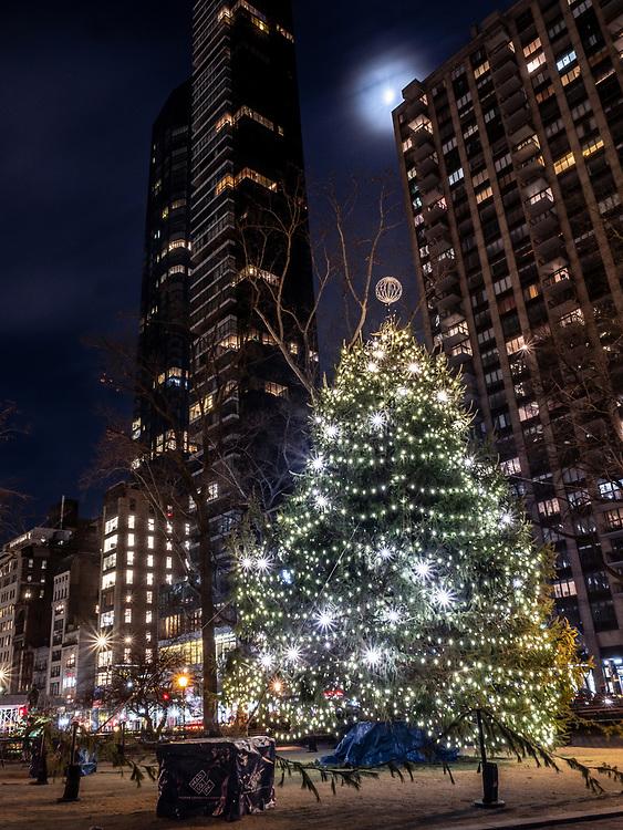 Christmas Tree at Madison Square Park, NYC