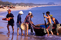 Everyone gathers to collect and sort the catch as the traditional coracle fishing boats return to shore.