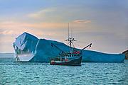 Iceberg and fishing boat returning from the Atlantic Ocean. Baie Verte Peninsula.<br />La Scie<br />Newfoundland & Labrador<br />Canada