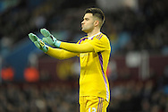 Goalkeeper Boaz Myhill of West Bromwich Albion giving directions to his players. The FA cup, 6th round match, Aston Villa v West Bromwich Albion at Villa Park in Birmingham, Midlands on Saturday 7th March 2015<br /> pic by John Patrick Fletcher, Andrew Orchard sports photography.