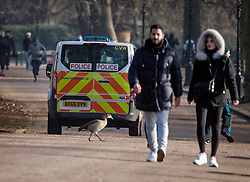 © Licensed to London News Pictures. 07/01/2021. London, UK. Police patrol in Hyde Park in central London, during a third national Lockdown, during which members of the public are only permitted to leave their homes for essential activities or to exercise once a day.. Photo credit: London News Pictures.