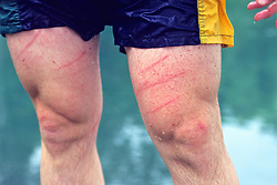 Scratches On Dog Swimming Instructor