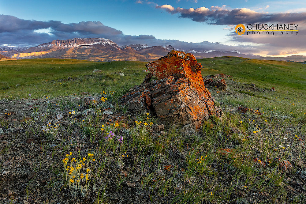 Colorful scattered moraine with Castle Reef along the Rocky Mountain Front near Augusta, Montana, USA