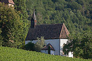 Local chapel on hillside overlooking wine-growing vineyards south-west of Bolzano, South Tyrol, northern Italy.