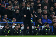 Antonio Conte, the Chelsea manager looking on from the touchline. Premier league match, Chelsea v Stoke city at Stamford Bridge in London on Saturday 31st December 2016.<br /> pic by John Patrick Fletcher, Andrew Orchard sports photography.