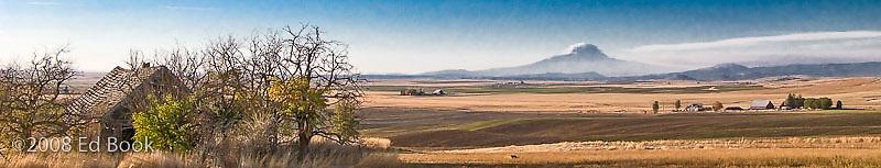 Mount Adams rises in the disatnce across weat farms in Klickitat County, WA, USA