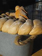 Pan confinado / Ciudad de Panamá.