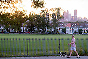 A dog walker and distant residential high-rise towers in the distant metropolis and a setting sun behind the ash trees that form one side of Ruskin Park in Lambeth, on 4th July 2021, in London, England.