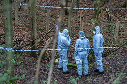 "© Licensed to London News Pictures. 07/12/2019. Gerrards Cross, UK. Forensic investigators look at a concrete pit indicated with an evidence identification marker as London's Metropolitan Police Service searches woodland in Gerrards Cross, Buckinghamshire. Police have been in the area conducting operations since Thursday 5th December 2019 and are searching two areas on Hedgerley Lane. In a press statement a Metropolitan Police spokesperson said ""Officers are currently in the Gerrards Cross area of Buckinghamshire as part of an ongoing investigation.<br /> ""We are not prepared to discuss further for operational reasons.""<br /> Photo credit: Peter Manning/LNP"