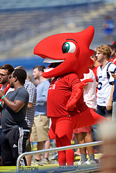 ANN ARBOR, USA - Friday, July 27, 2018: Liverpool's mascot Mighty Red during a training session ahead of the preseason International Champions Cup match between Manchester United FC and Liverpool FC at the Michigan Stadium. (Pic by David Rawcliffe/Propaganda)
