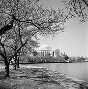9969-D14. Jefferson Memorial & Tidal Pool,  Washington, DC, March 24-April 1, 1957
