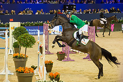 Govoni Gianni, ITA, Queen 2000 Z<br /> Jumping Amsterdam 2018<br /> © Sharon Vandeput<br /> 26/01/18