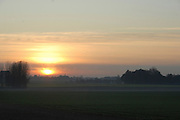 France, Normandy, forest at dusk