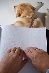 Visually-impaired person reading Braille, guide dog at their feet
