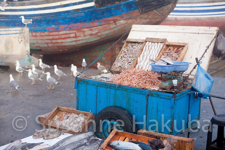 Harbour, Essaouira, Morocco.