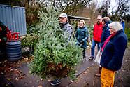 Kerstbomen uitgraven op landgoed Duivenvoorde