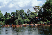 Maori warriors in war canoes during cultural display in New Zealand