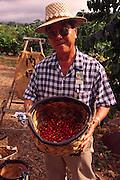 Uchida Farm, Kona Coffee, Island Of Hawaii, (editorial use only, no model release)<br />