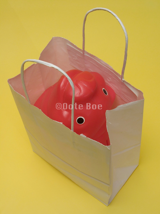 shopping bag with a piggy bank in it