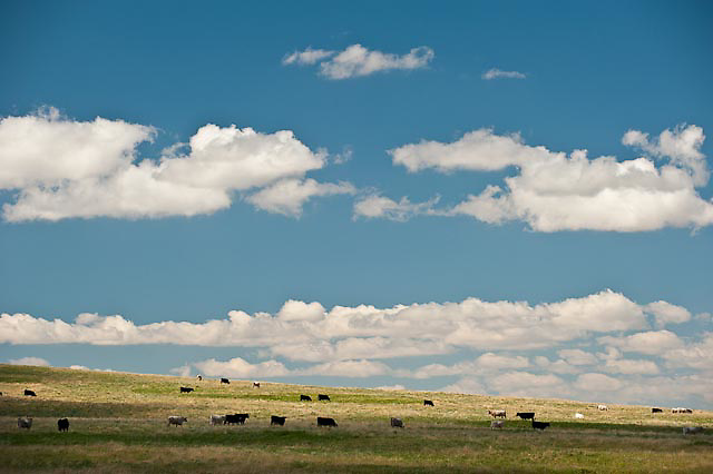 russell country, montana, usa, russell