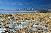 Laguna Sta Rosa, Nevado Tres Cruces National Park, North Chile, Atacama Region