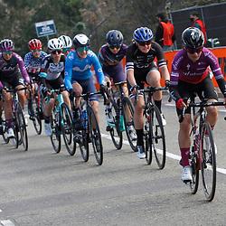18-04-2021: Wielrennen: Amstel Gold Race women: Berg en Terblijt: Ashleigh Moolman