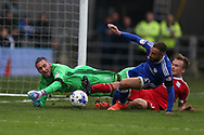 Cardiff city goalkeeper Allan McGregor saves and Jazz Richards of Cardiff city © clears from a close range shot from Maikel Kietenbeld of Birmingham city ®. . EFL Skybet championship match, Cardiff city v Birmingham City at the Cardiff City Stadium in Cardiff, South Wales on Saturday 11th March 2017.<br /> pic by Andrew Orchard, Andrew Orchard sports photography.