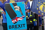 Anti Brexit pro Europe demonstrators protest waving European Union and Union Jack flags in Westminster opposite Parliament one week before MPs vote on the finalised deal on 8th January 2019 in London, England, United Kingdom. MPs will vote on Theresa Mays Brexit deal on Tuesday, 15 January, government sources confirmed.