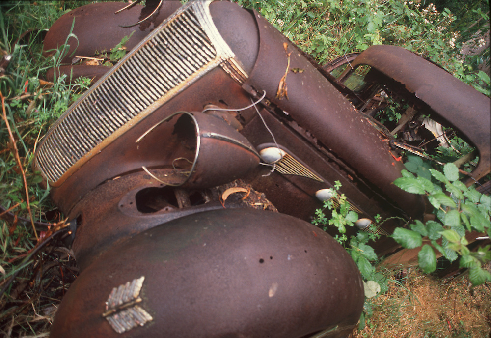 Rusted remains of circa 1930s auto appearing to rise from the vegetation.